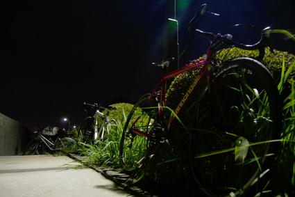 Hanabi2011_10