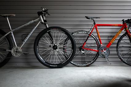 29er_pedal01