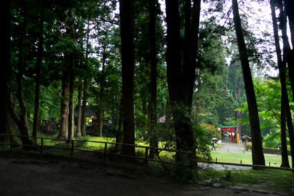 Hiraizumi_08